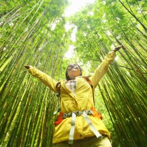 sustainable travel tourism